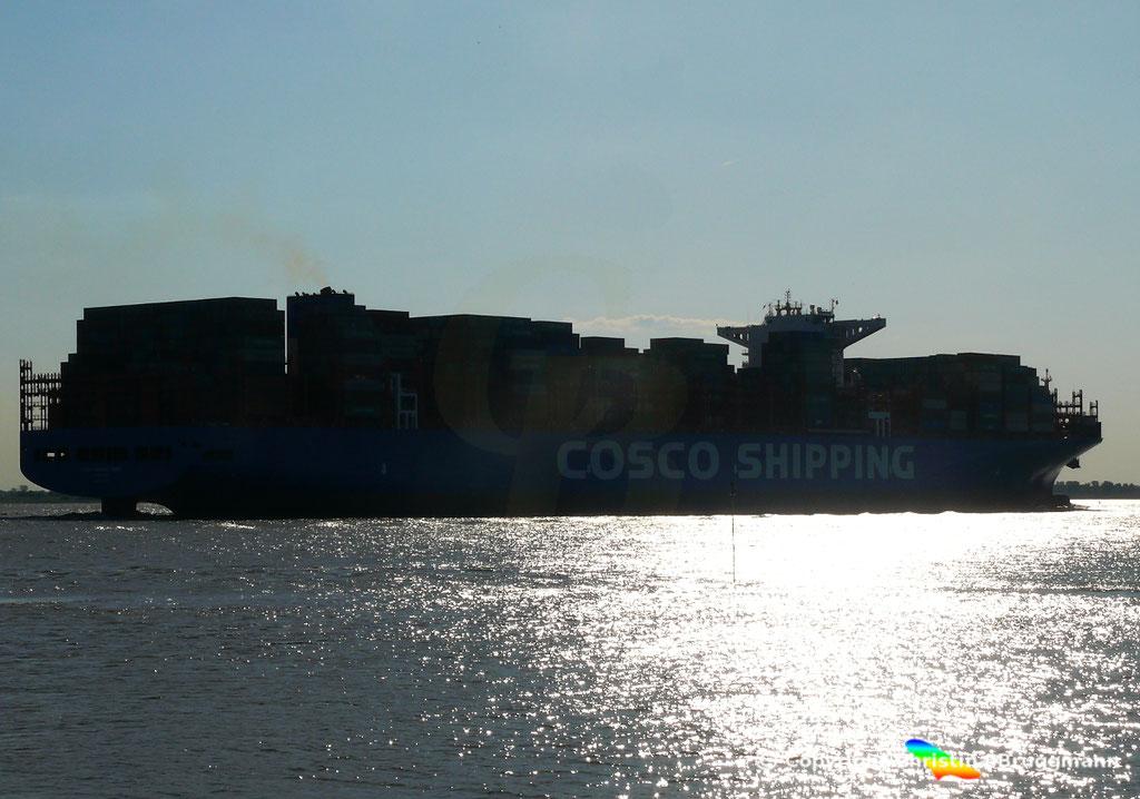 Containerschiff COSCO SHIPPING GEMINI, 21.05.2018, BILD 6