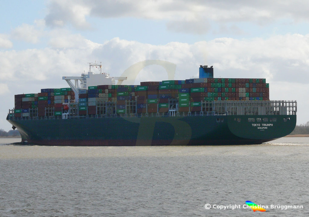 Containerschiff TOKYO TRIUMPH, Elbe 19.03.2019 / BILD 12