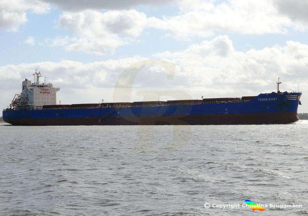 Bulk Carrier TIGER EAST, Elbe 19.03.2019,  BILD 3