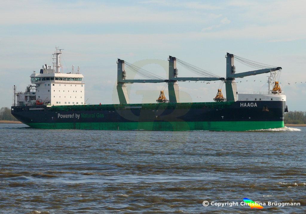 Bulk Carrier/Mehrzweckfrachter HAAGA, Elbe 03.04.2019,  BILD 12