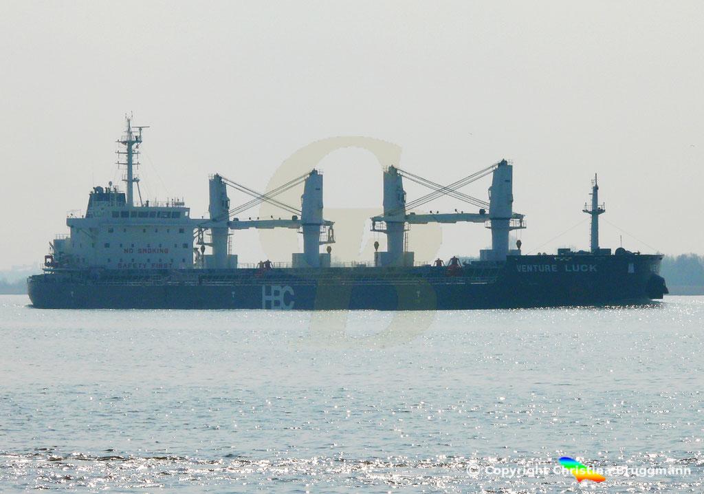 HBC Bulk Carrier VENTURE LUCK, Elbe 30.03.2019,  BILD 2