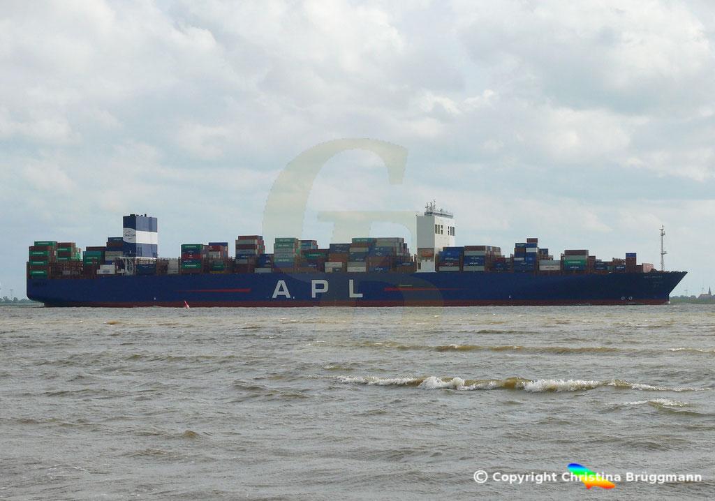 Containerschiff APL LION CITY, Elbe 06.07.2019,  BILD 6