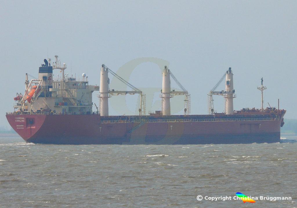 Bulk Carrier FEDREAL KIVALINA, Elbe 30.04.2019 / Bild 6