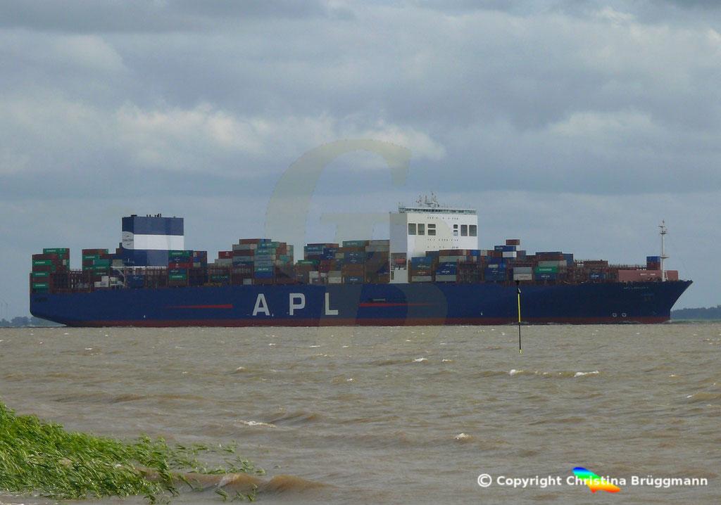 Containerschiff APL LION CITY, Elbe 06.07.2019,  BILD 8