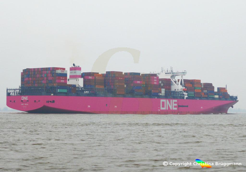 Containerschiff ONE GRUS, Elbe 20.03.2019,  BILD 5