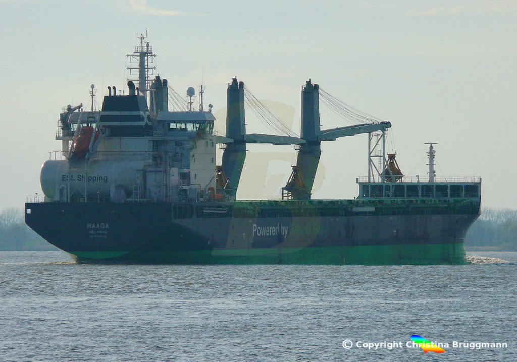 Bulk Carrier/Mehrzweckfrachter HAAGA, Elbe 03.04.2019,  BILD 16