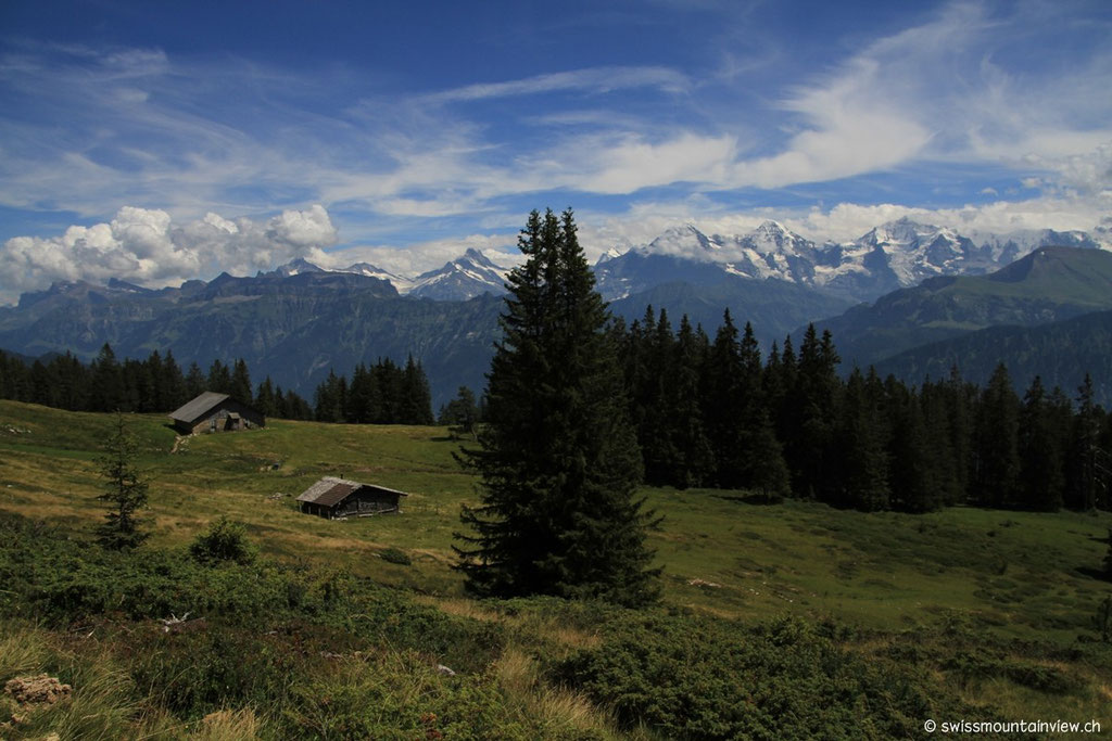 an der Alp Flösch