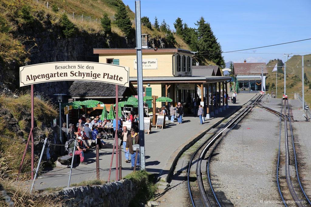 wieder die Station der Schynigen Platte, wo die Tagestouristen wieder den Zug hinunter ins Tal nehmen,