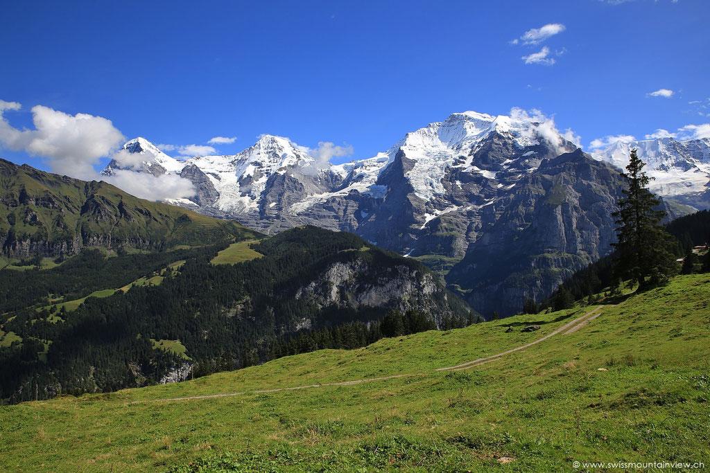Wanderung von Grütschalp zur Winteregg - Eiger, Mönch und Jungfrau immer im Blick!