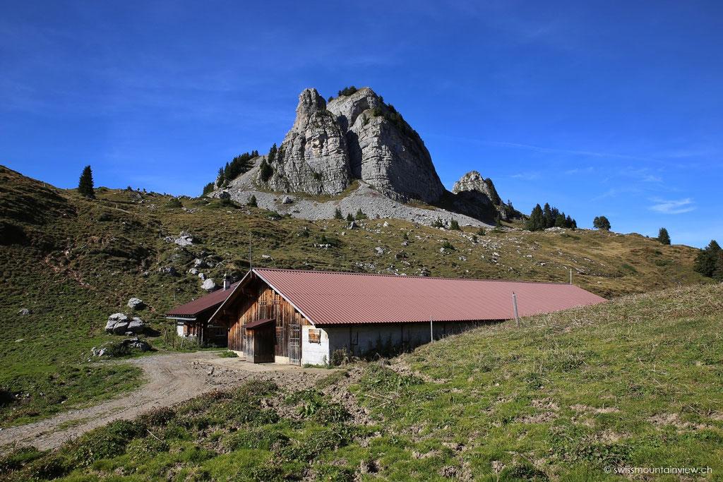 Blick zurück aufs Oberberghorn.