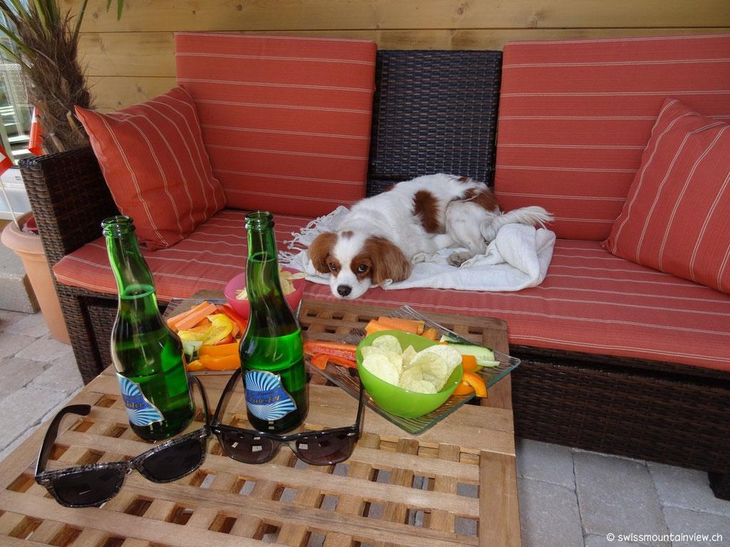 Charly am Chillen... er hat es sich verdient ;) - das Sofa - und der Rest ist für die Mädels.