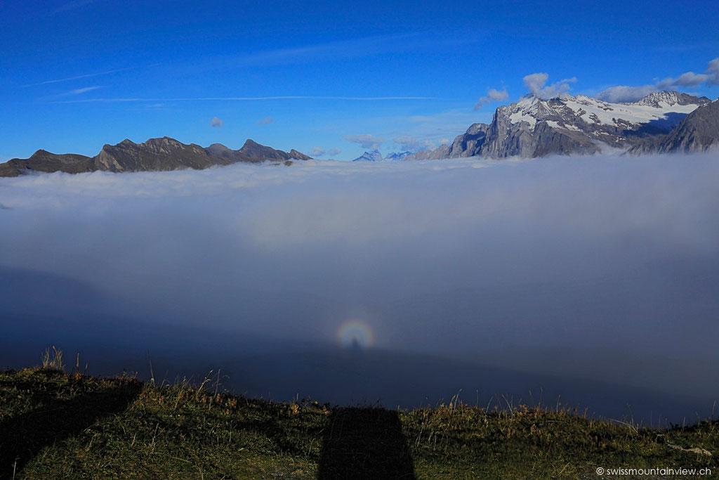 """Beim Aufstieg begleitet uns ein """"Heiligenschein"""" im Nebel."""