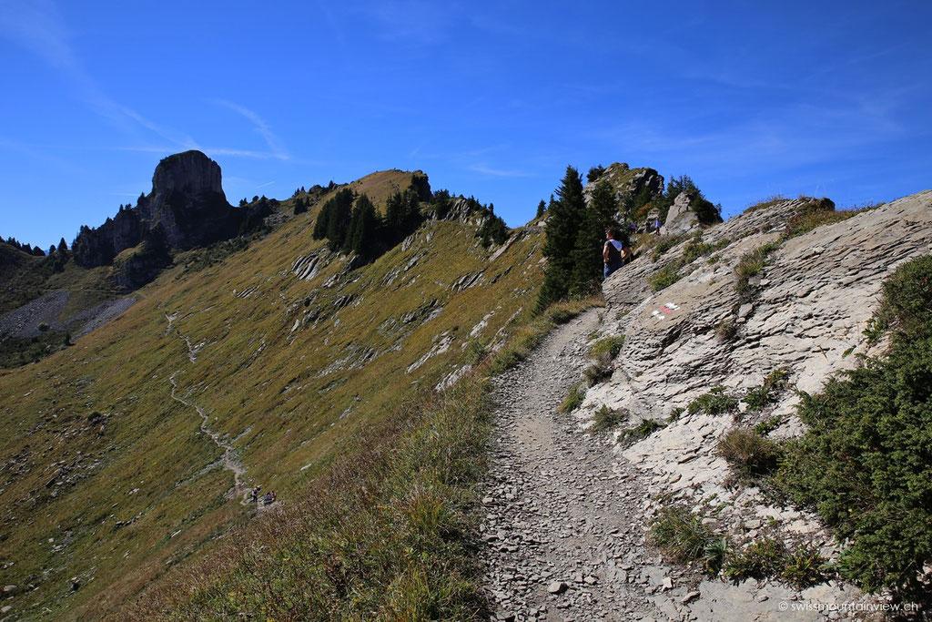 Bei der Gabelung haben wir die Wahl - zurück Richtung Schynige Platte wandern, hinauf aufs Oberberghorn oder weiter Richtung Faulhorn.