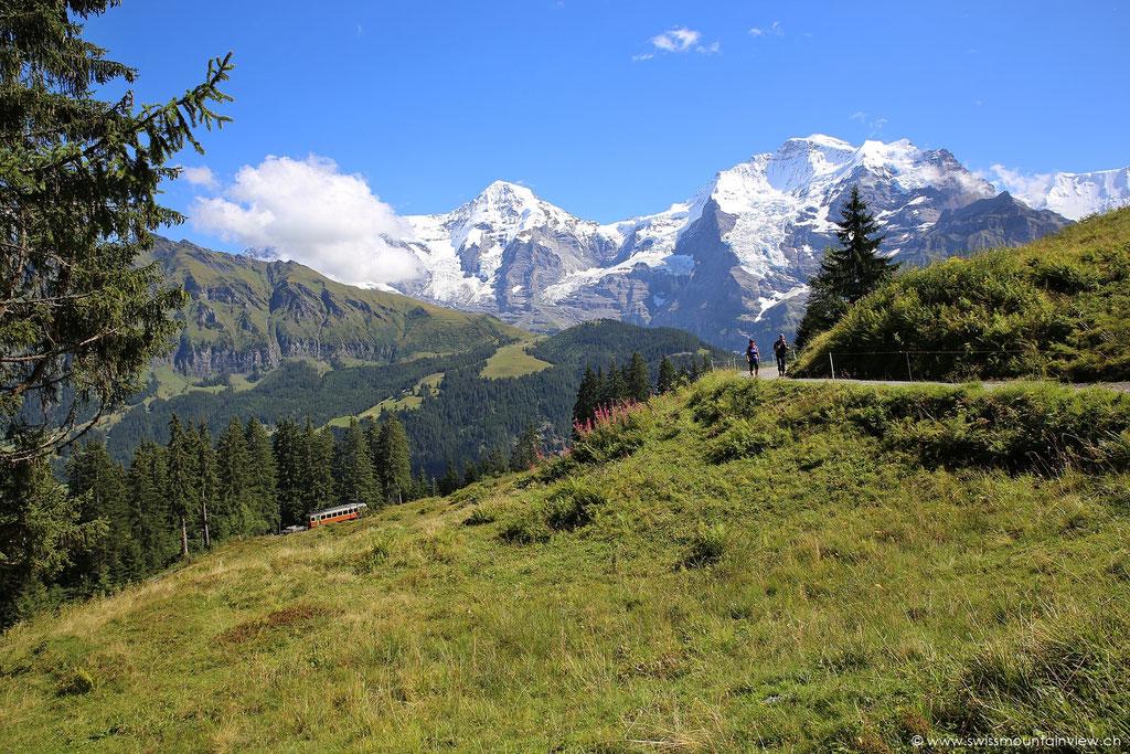 Von Lauterbrunnen mit der Gondel hinauf auf die Grütschalp und nun unterwegs Richtung Winteregg