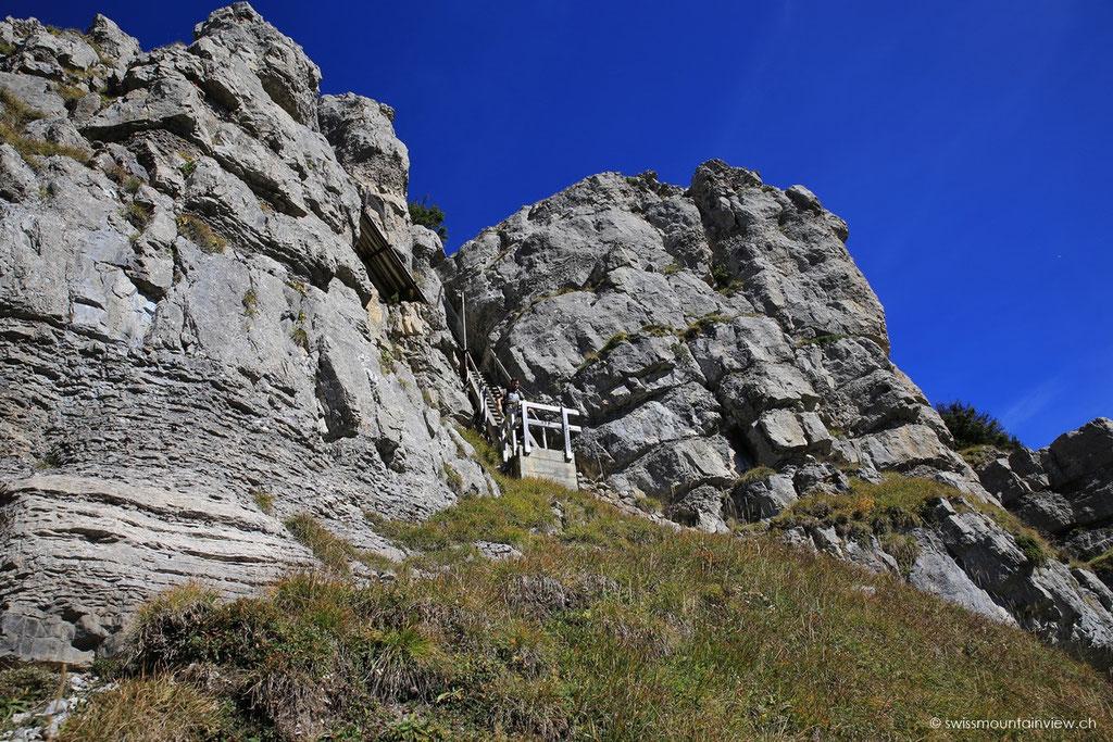 Nach dem Abstecher auf den Gipfel geht's hinunter auf den Rundwanderweg.