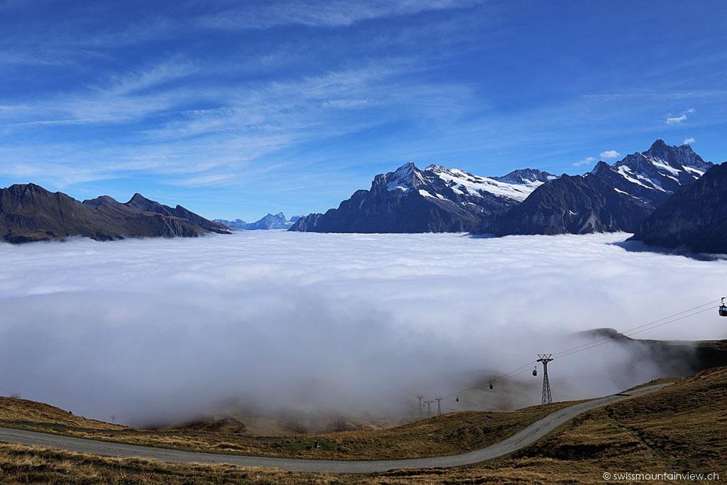 Die Nebeldecke ist sehr kompakt und reicht bis auf eine Höhe von rund 2'000 m.