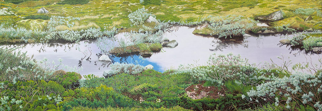 Hardangervidda | 2017 | 70 x 200 cm | Acryl auf Leinwand