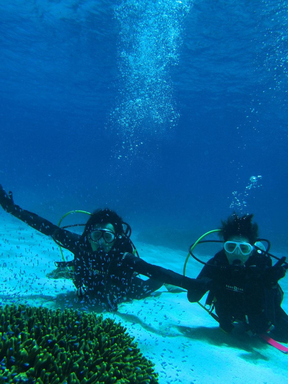 ヨロン島の綺麗な海で体験ダイビング! 与論島サイコー