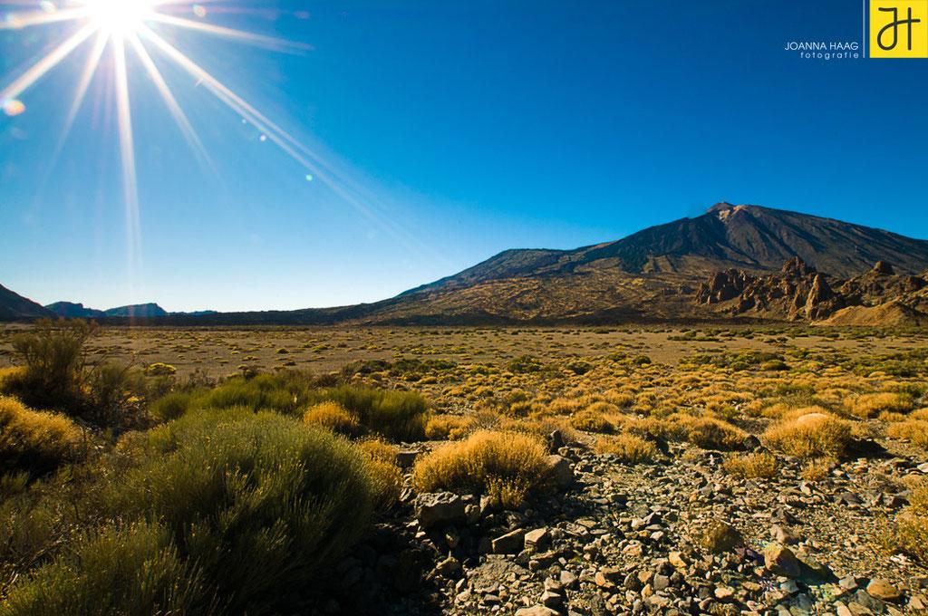 Spanien, Teneriffa, Nahe des Vulkans Teide - © JOANNA HAAG