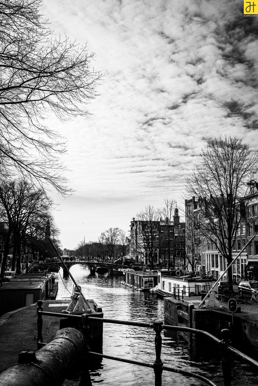 © JOANNA HAAG - Amsterdam 02/2019