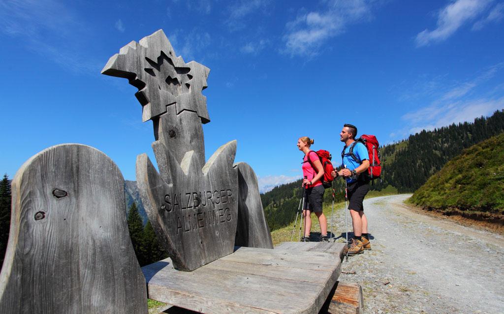 Salzburger Almenweg durch das Grossarltal - © www.grossarltal.info