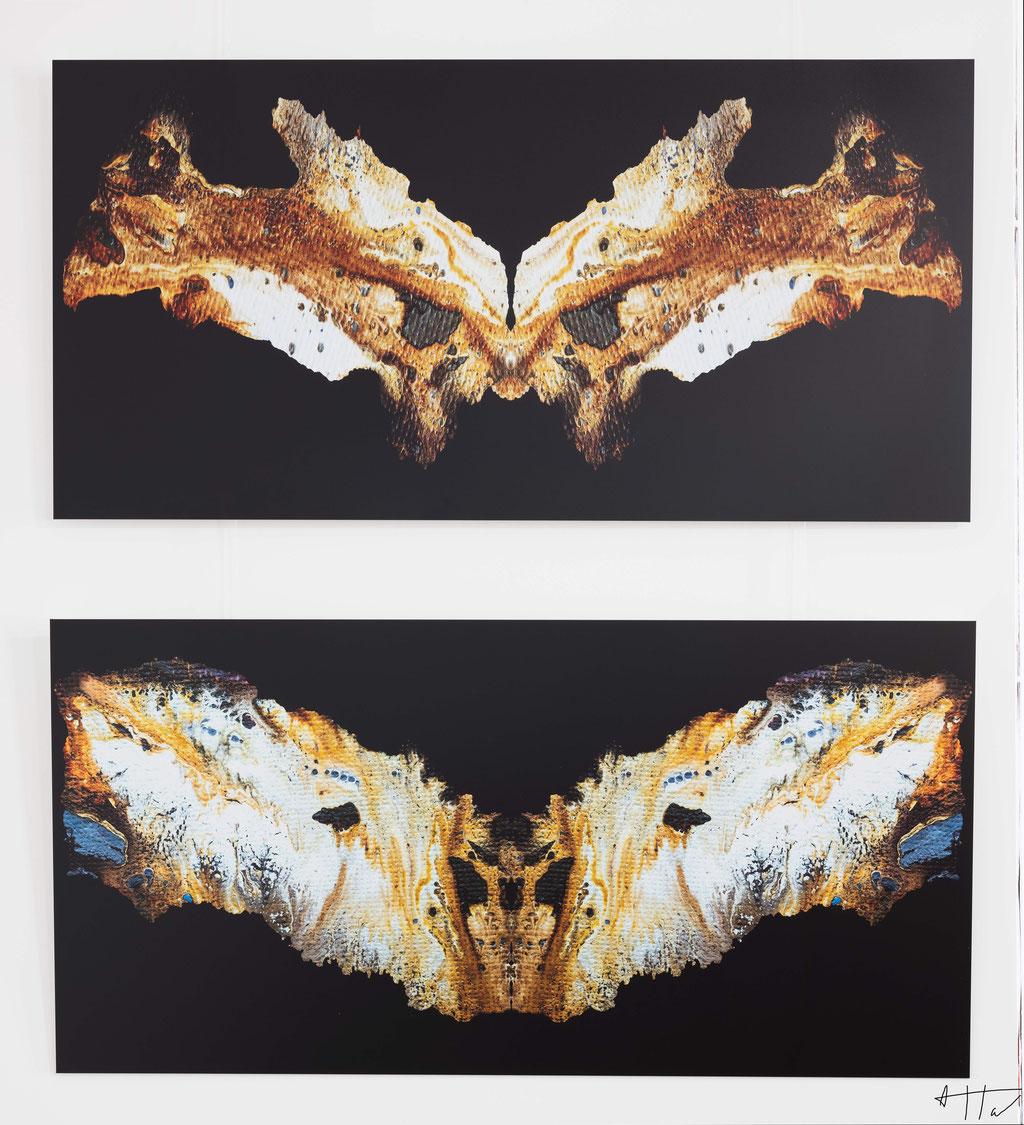 Visage d'os (top), Papillon (bottom), aluminium dibond, 50 cm x 100 cm, series of 5 prints + 2 AP (each artwork).