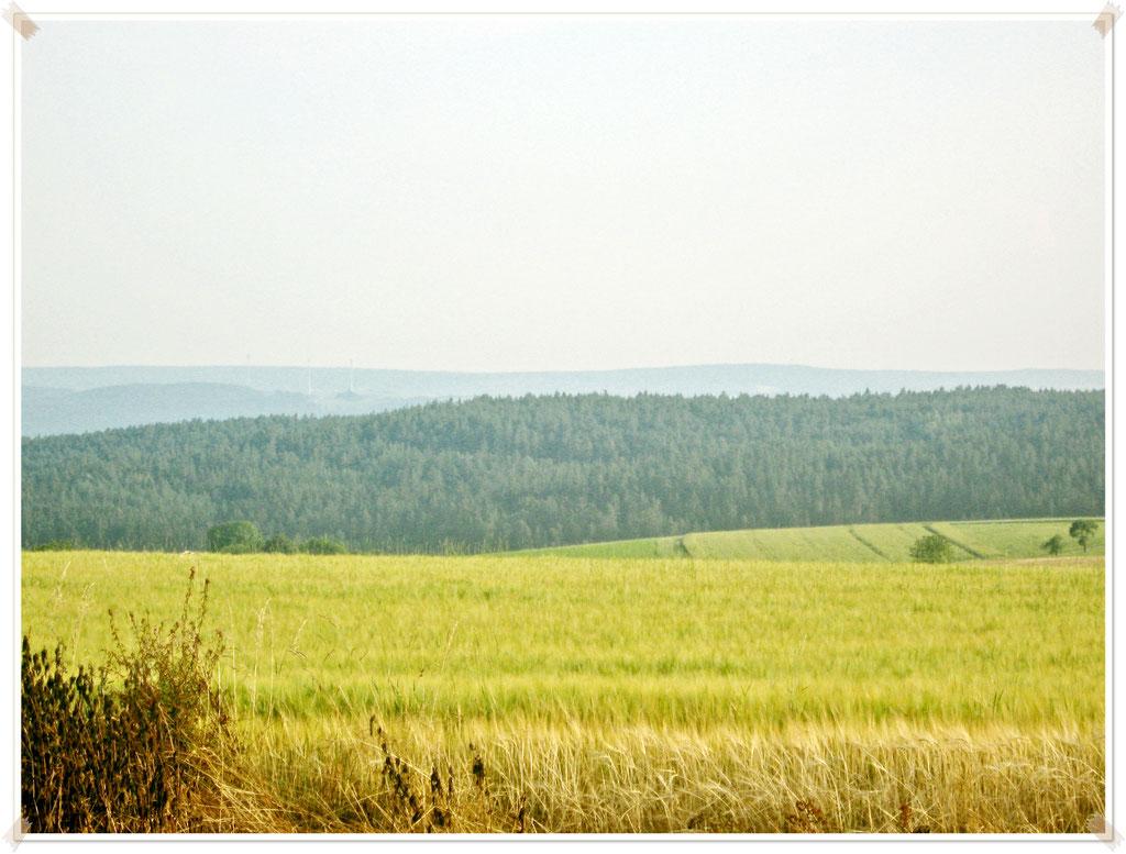 Wiese Aussicht Hügel Landschaft nervenkeks