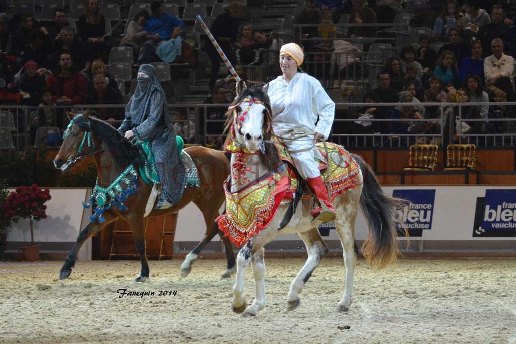 Show des races - Chevaux BARBE 18