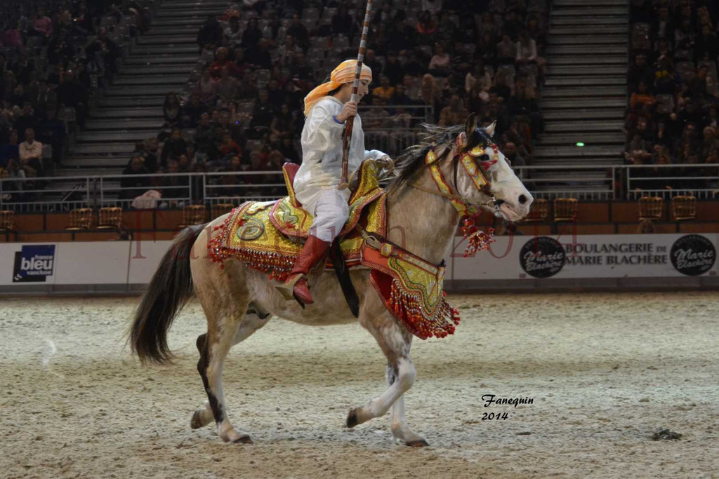Show des races - Chevaux BARBE 29