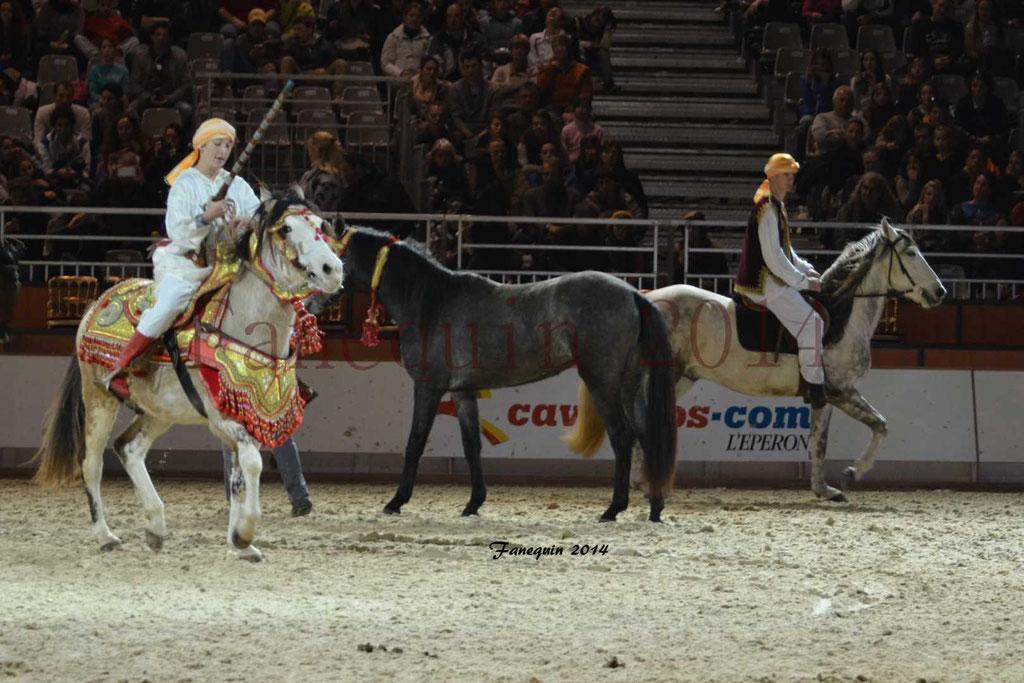 Show des races - Chevaux BARBE 23