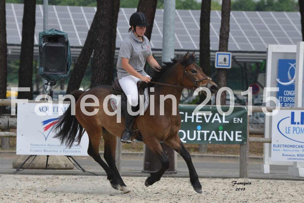 Salon Equitaine de Bordeaux 2015 - concours confirmation de Poneys Landais