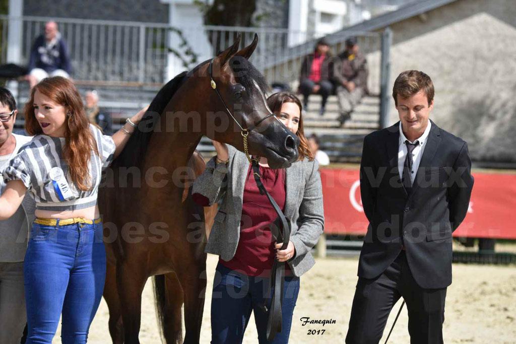 Championnat de France de chevaux Arabes à Pompadour les 19 & 20 Août 2017 - ESMAELIA AL HEVAN - 15