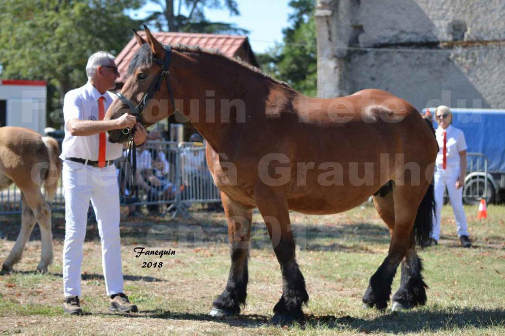 Fête du cheval à GRAULHET le 16 septembre 2018 - Concours Départemental de chevaux de traits - 50