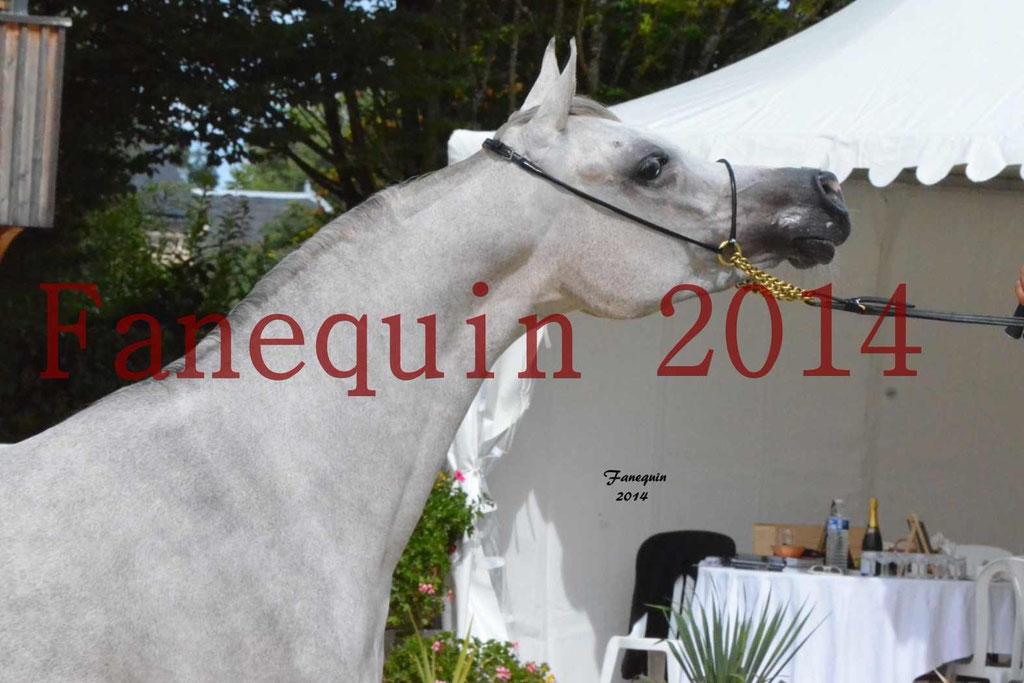 CHAMPIONNAT DE FRANCE 2014 A POMPADOUR - Notre Sélection - Portraits - BLEUENN MILIN AVEL - 4