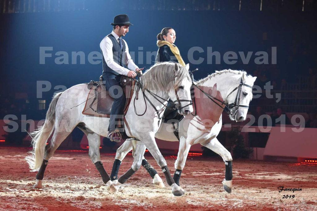 Cheval Passion 2019 - Présentation Hall A - DE 2 CAMARGUE