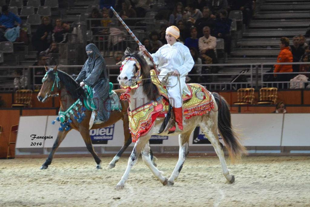 Show des races - Chevaux BARBE 06