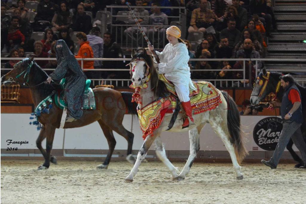 Show des races - Chevaux BARBE 05