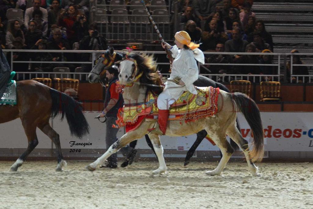 Show des races - Chevaux BARBE 17