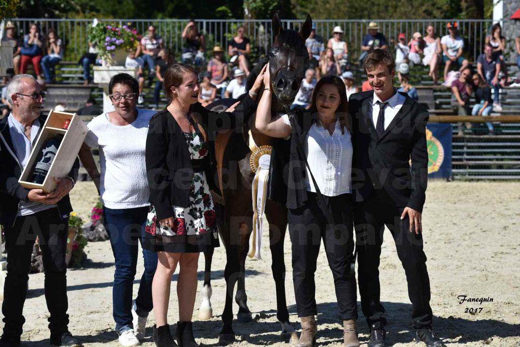 Championnat de France de chevaux Arabes à Pompadour les 19 & 20 Août 2017 - ESMAELIA AL HEVAN - 17