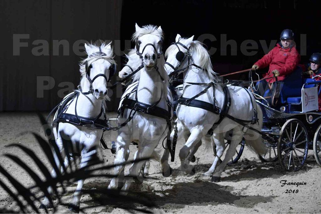 """Cheval Passion 2018 - Show des Races - Cheval CAMARGUE - attelage 4 chevaux - """"attelage en Team"""""""