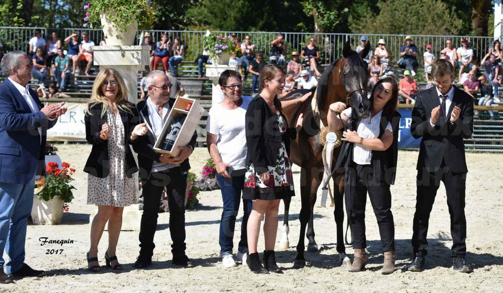 Championnat de France de chevaux Arabes à Pompadour les 19 & 20 Août 2017 - ESMAELIA AL HEVAN - 16