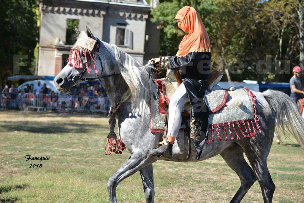 Fête du cheval à GRAULHET le 16 septembre 2018 - Présentation de chevaux Arabe Elevage de GACIA - 03