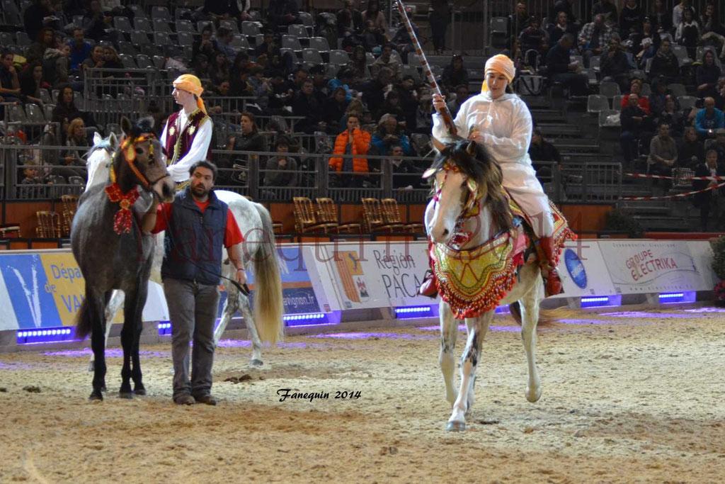 Show des races - Chevaux BARBE 24