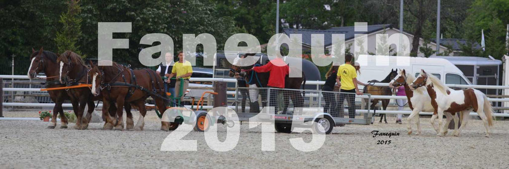 Salon Equitaine de Bordeaux 2015