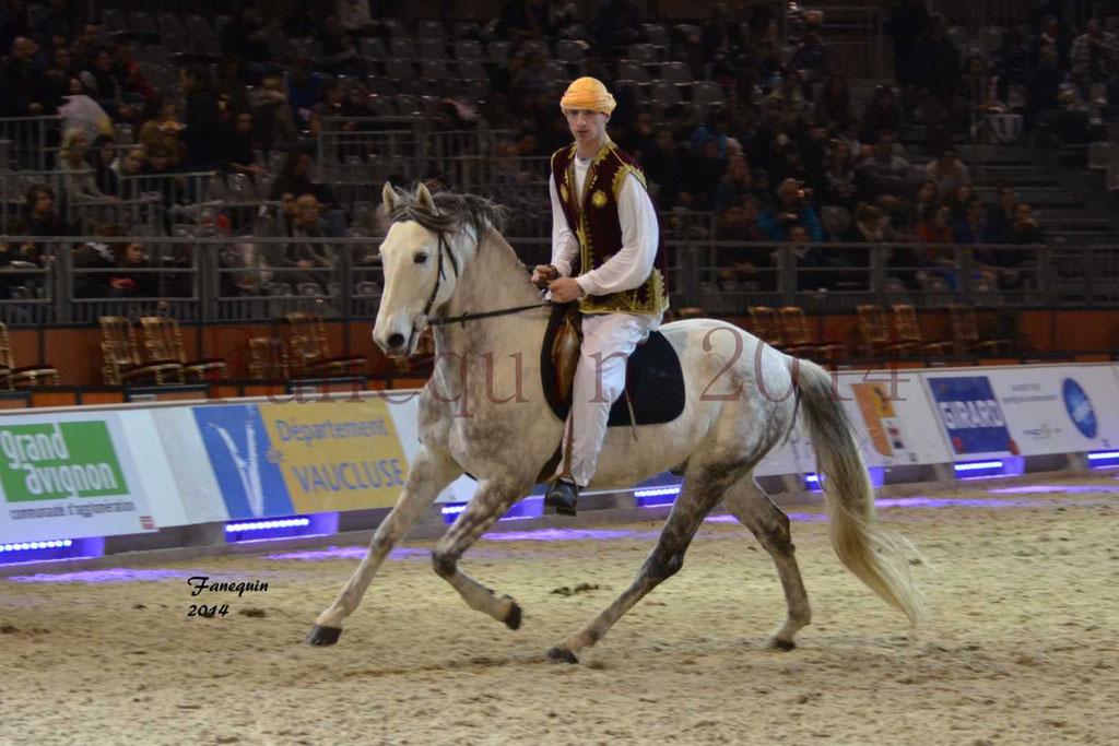 Show des races - Chevaux BARBE 11