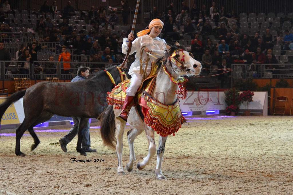 Show des races - Chevaux BARBE 10
