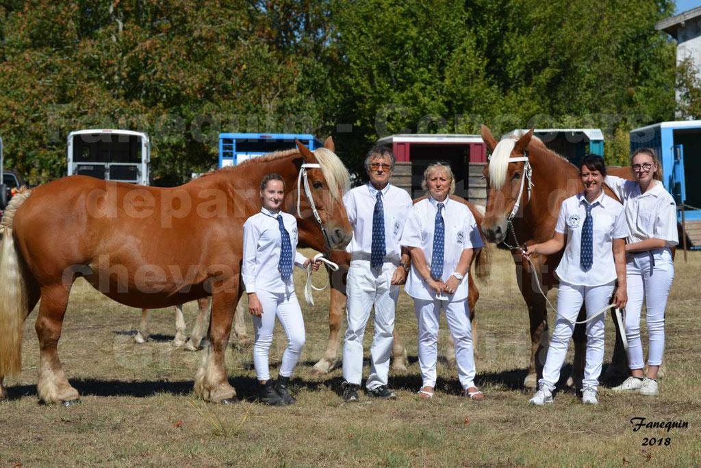 Concours départemental de chevaux de traits à GRAULHET en 2018 - Elevage POUJADE - Notre Sélection - 02