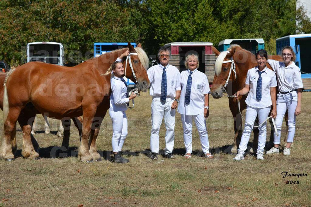 Concours départemental de chevaux de traits à GRAULHET en 2018 - Elevage POUJADE - Notre Sélection - 03