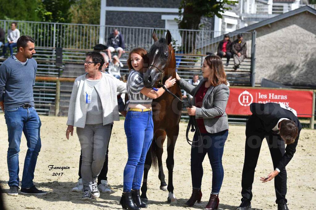 Championnat de France de chevaux Arabes à Pompadour les 19 & 20 Août 2017 - ESMAELIA AL HEVAN - 14