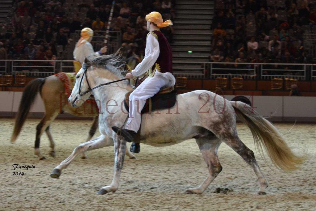 Show des races - Chevaux BARBE 12